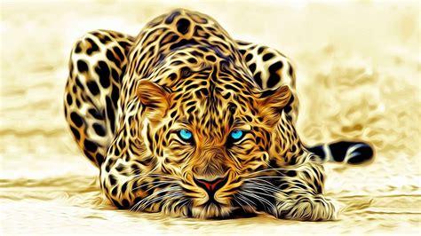 jaguar wild animal  full hd wide wallpapers hd