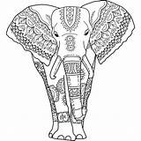 Coloring Elephant Adults India sketch template
