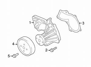 Ford Fusion Engine Water Pump Pulley  1 6 Liter  1 6 Liter