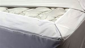 protects your mattress box spring and pillows from bed With bed bug cover reviews
