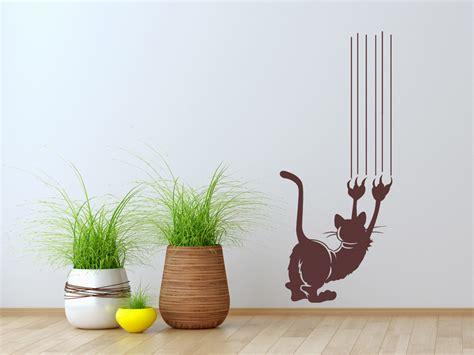 Katze Kratzt An Wand