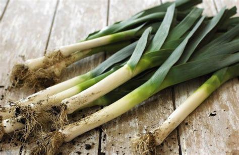 comment cuisiner les poireaux quels sont les fruits et légumes d 39 automne et où les