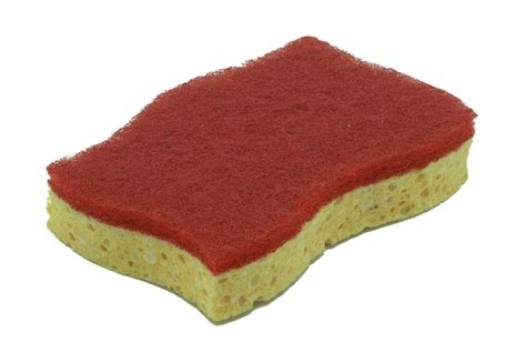Sponge (tool)