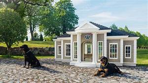 luxury pet products home the sunday times With where can i buy a dog house