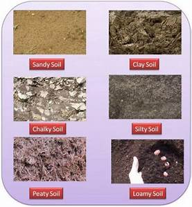 14 best Soil images on Pinterest   Science ideas, Teaching ...