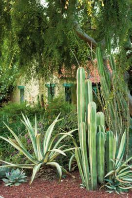 exotic garden color design   arts crafts house