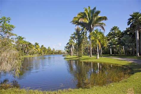 weather palm gardens fl florida s climate and weather
