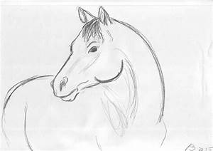 Easy Horse Sketches | www.imgkid.com - The Image Kid Has It!