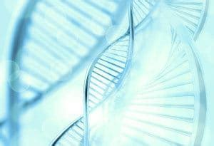 genetic testing  counseling  high risk pregnancy center