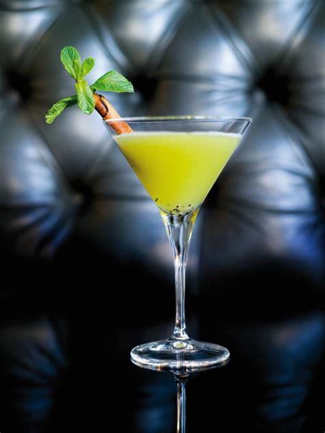 cocktail garden 105 best images about cocktails drankjes on pinterest