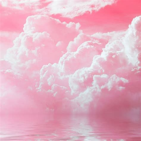 8tracks radio Pink Cloud (6 songs) free and music playlist