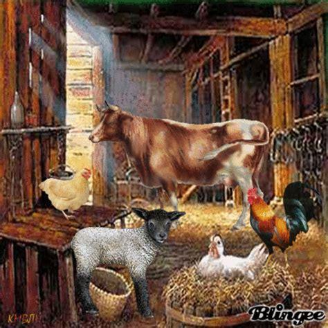 farm animals   barn picture  blingeecom