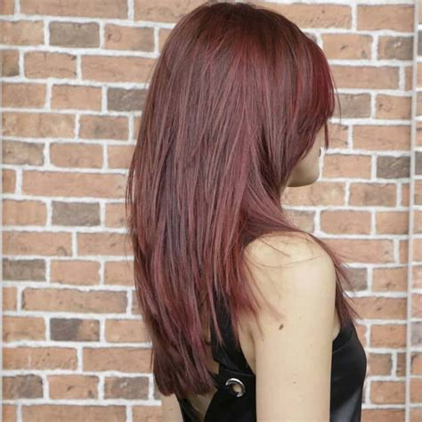 top  womens medium length hairstyles   photosvideos