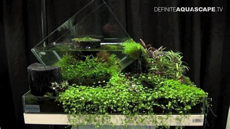 Aquascape Nano by Aquascaping The Of The Planted Aquarium 2013 Nano Pt
