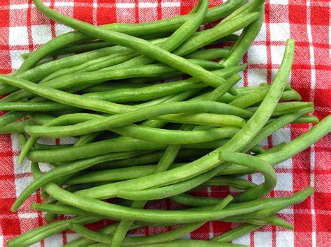 cuisiner des haricots blancs comment cuisiner les haricots verts 28 images comment