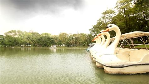 Swan Boats Lumpini Park by Unrecognizeable Of Speed Walking In Bangkok
