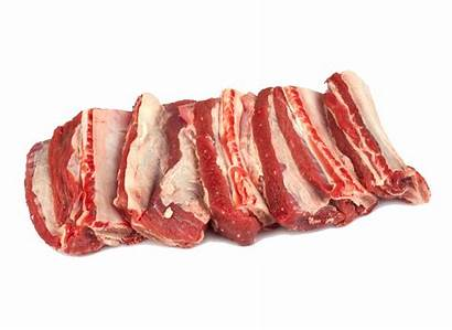 Meat Raw Transparent Type