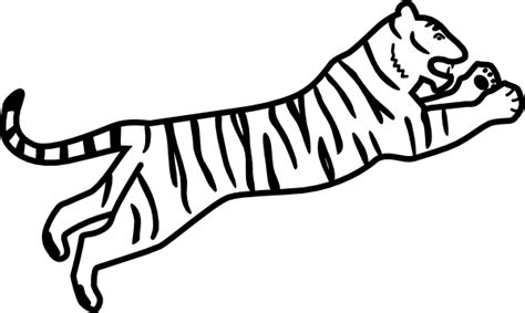 draw  tiger drawing blog