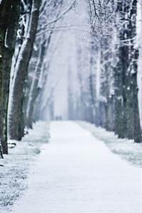 love Christmas snow photography winter beautiful vintage ...
