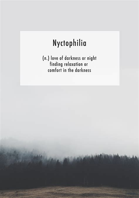nyctophilia norframe