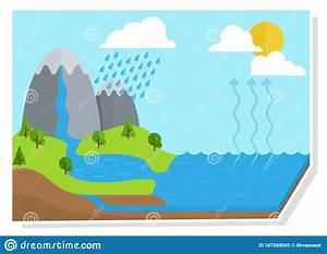 Water Cycle Diagram Vector Shows The Water Cycle From