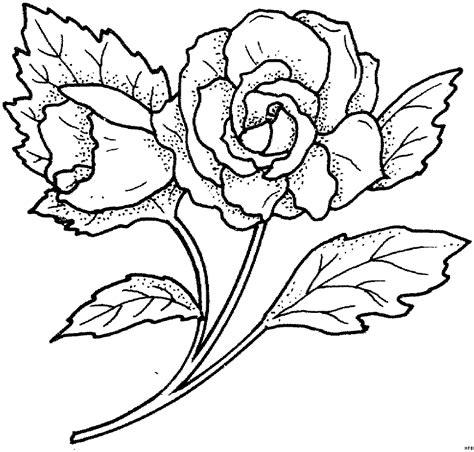 Vorlage Einfach by Einfache Schoene Ausmalbild Malvorlage Blumen