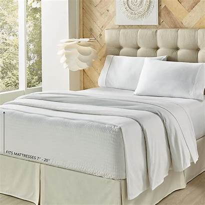 Sheet Royal Microfiber Queen Cotton Ivory Count