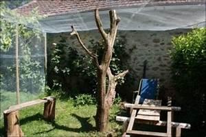 Construire Enclos Pour Chats : construire son enclos le chat forgeron ~ Melissatoandfro.com Idées de Décoration