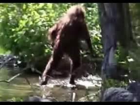 2015 Real BigfootEvidence