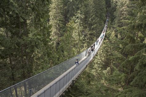 Grouse Mountain And Capilano Suspension Bridge Park From