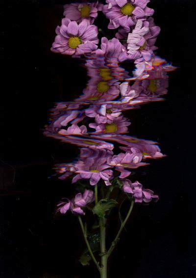 flower glitch art print  maisiecousins glitch