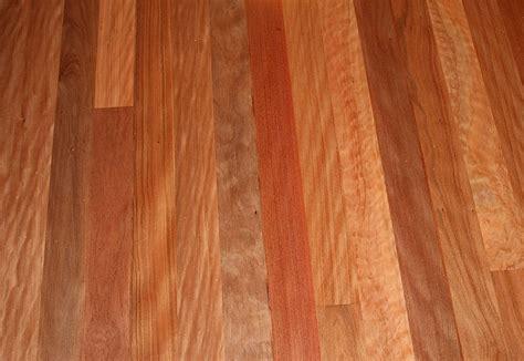 timber flooring images brush box lophostemon confertus gloria timber flooring