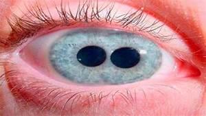 Incre U00edbles Ojos Humanos Reales Que Jamas Has Visto
