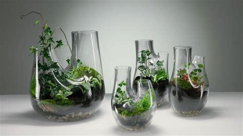 Wie Pflanzen Im Glas Gedeihen