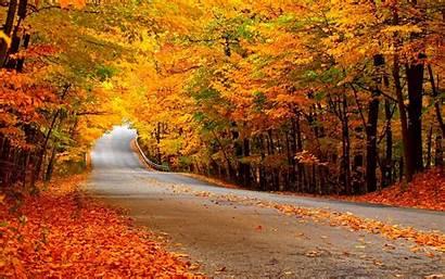 Autumn Fanpop Desktop Background Leaves Wallpapers Road