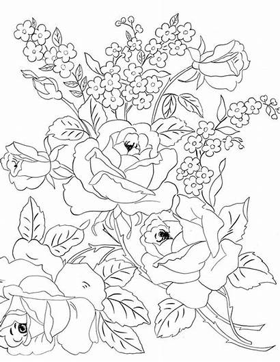 Embroidery Patterns Flower Flowers Roses Coloring Pages
