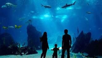 wedding venues in albuquerque cincinnati ohio newport aquarium photo picture image
