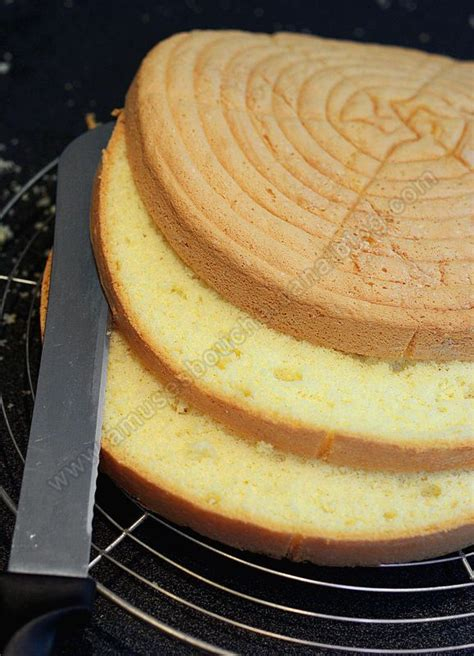cuisine rapide genoise une génoise poids plume genoise gâteau et rapide