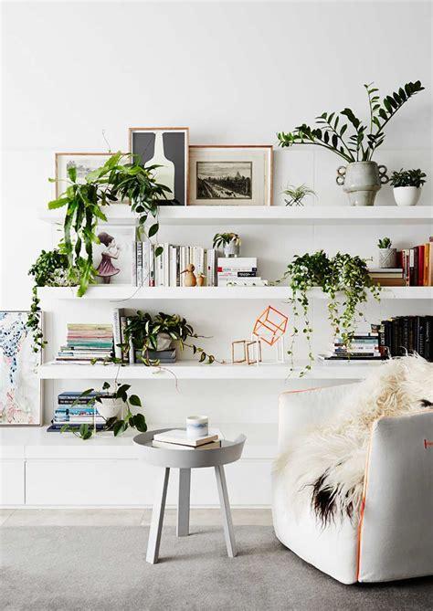 ide mendekorasi ruang tamu tanaman hias arsitag