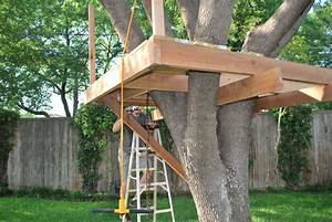 Easy Simple Tree House Plans Quotes - House Plans #74739