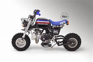 Racing Caf U00e8  Honda Gorilla By Blast Factory