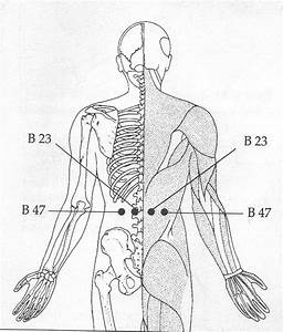 Acupressure Points To Relieve Gas And Stomach Problems