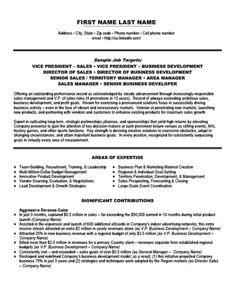 Vice President Of Sales Resume Template  Premium Resume. Certification On A Resume. Resume Job Description Examples. Objectives To Put On A Resume. Government Job Resume. Resume Hobbies. Resume Builders Free. Resume For Personal Trainer. Resume Web Developer