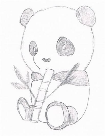 Panda Coloring Pages Pandas Drawing Bamboo Eating