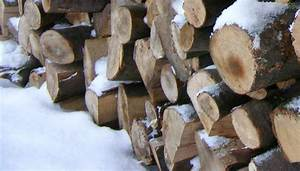 Holz Für Kamin : holz alternativen als kamin brennstoffe pinkies ~ Markanthonyermac.com Haus und Dekorationen