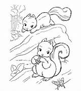 Squirrel Coloring Pages Interesting Printable Keep Busy sketch template