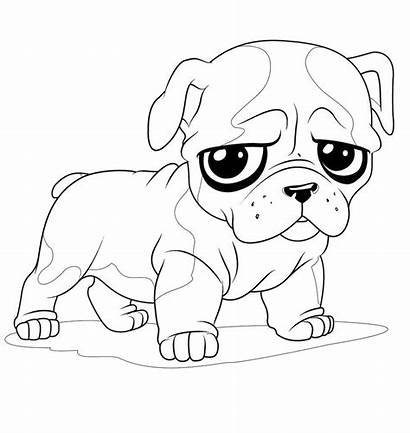 Coloring Animal Pages
