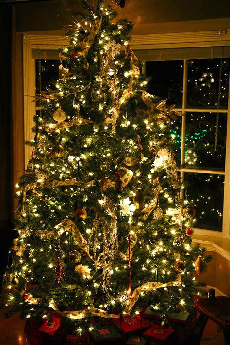 decorate  christmas tree  lights  www