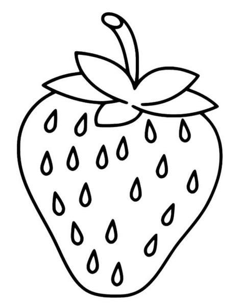 gambar buah untuk diwarnai anak tk bonus