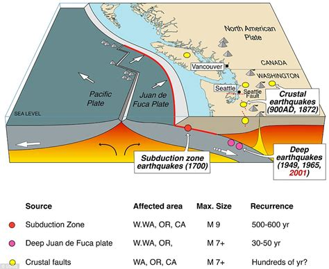 simulation shows how pacific northwest could be decimated